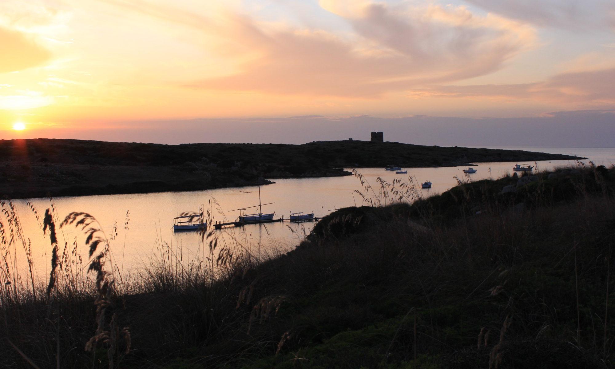 Sanitja Menorca